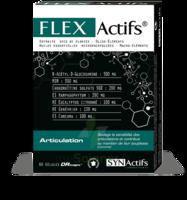 Synactifs Flexactifs Gélules B/60 à MONTGISCARD