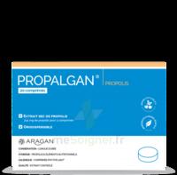 Aragan Propalgan Comprimés orodispersibles adulte B/20 à MONTGISCARD