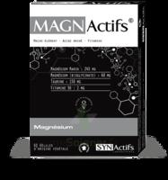Synactifs Magnactifs Gélules B/60 à MONTGISCARD