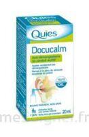 QUIES DOCUCALM ANTIDEMANGEAISONS DU CONDUIT AUDITIF, spray 20 ml à MONTGISCARD