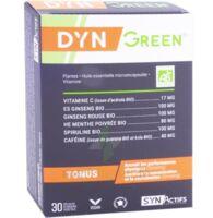 Synactifs Dyngreen Bio Gélules B/30 à MONTGISCARD