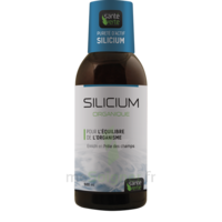 Santé Verte Silicium Solution buvable Fl/500ml à MONTGISCARD