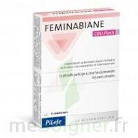 Feminabiane CBU Flash Comprimés à MONTGISCARD