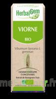 Herbalgem Viorne Macérat bio 30ml à MONTGISCARD