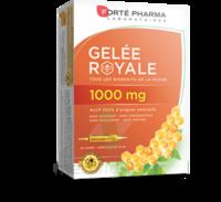 Forte Pharma Gelée royale 1000 mg Solution buvable 20 Ampoules/10ml à MONTGISCARD