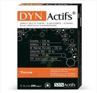 Synactifs Dynactifs Gélules B/30 à MONTGISCARD