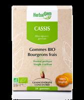 Herbalgem Gomme cassis bio B/24 à MONTGISCARD