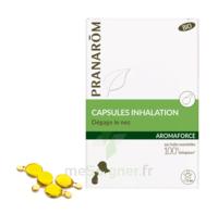 Aromaforce Caps inhalation bio B/15 + Inhalateur à MONTGISCARD